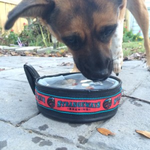 Dog water bowl
